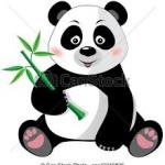Bebe Bambu