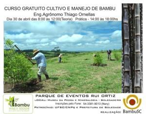 Curso Bambu Soledade